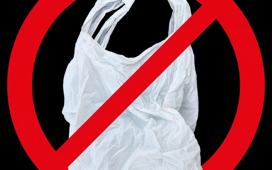 NO PLASTIC BAGS!