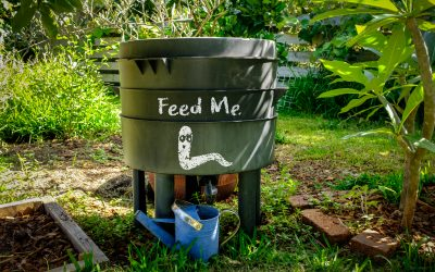 Yard Waste and Composting